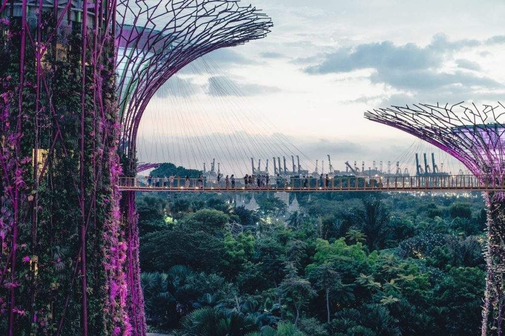 singapore-gardens-by-the-bay-3